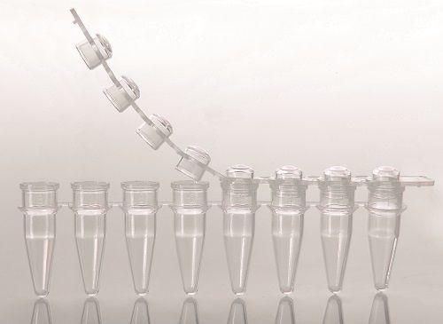 Microtubo em Tiras PCR 8 x 200 ul Tampa Domed