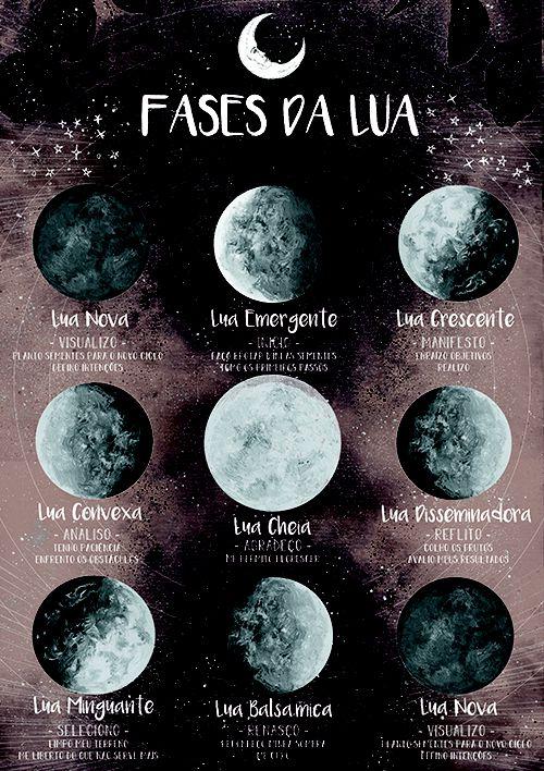 As 8 Luas