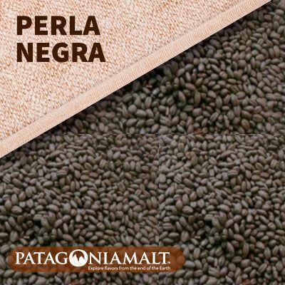 MALTE PATAGONIA PERLA NEGRA