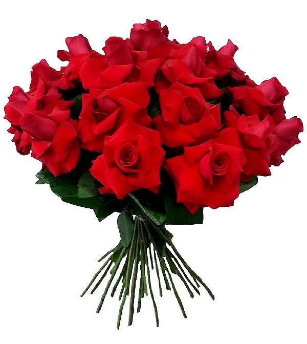 Buquê Fascinante de 24 Rosas Colombianas
