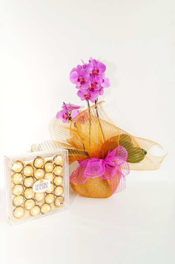Orquídea Phalaeonopolis Cascata Pink