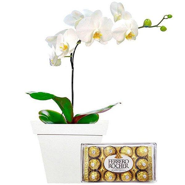 Luxuosa Orquídea Branca em Cachepô, com Ferrero Rocher