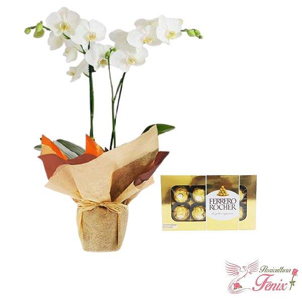 Orquídea Duas Hastes e Ferreo Rocher 100g