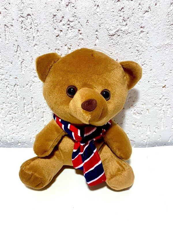 Urso Teddy Pequeno