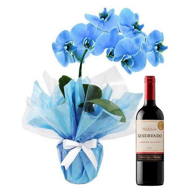 Luxuosa Orquidea Azul e Vinho Reservado