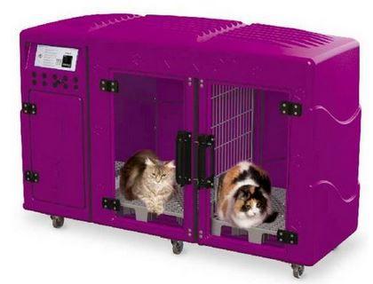 Máquina de Secar Pet Profissional Kyklon Rosa