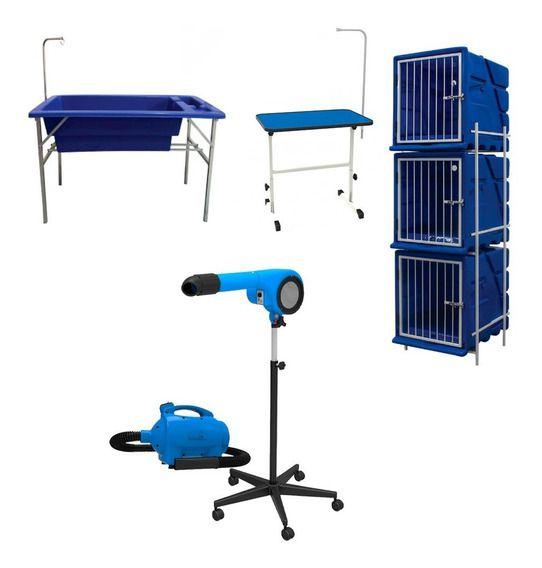 Secador Soprador Minag Mesa Canil E Banheira Pet Shop Azul