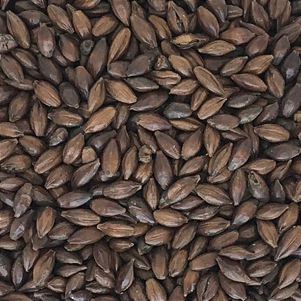 Malte Chocolate - 900 a 1100 EBC