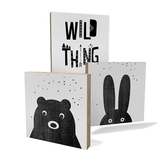 Kit 3 Placas Compensado Mini (10x10cm) Wild Animals