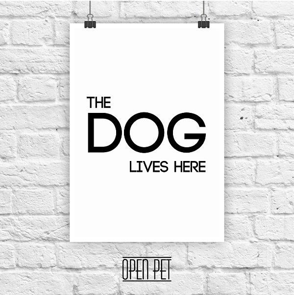 Poster Dog Lives