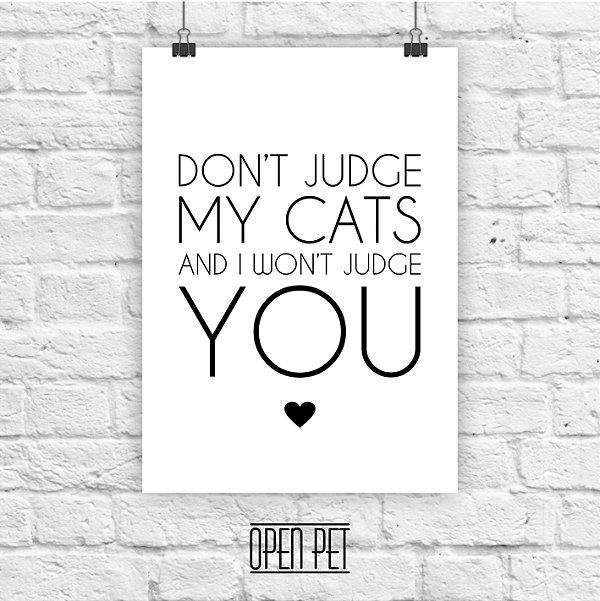 Poster Judge Cats