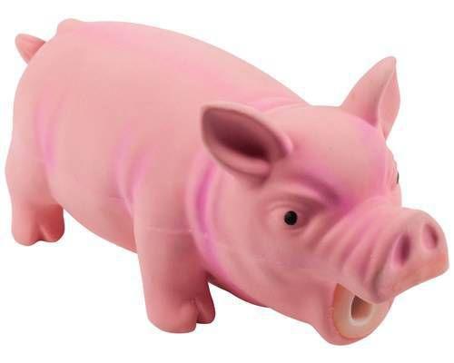 Porco Látex com Ronco Pawise