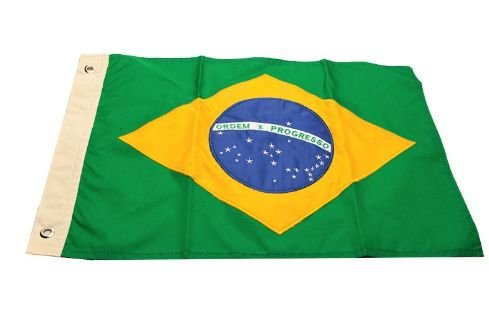 Bandeira do Brasil 33 x 47cm