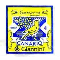 4ª Corda de Guitarra Canario GESGT.4 (Ré)