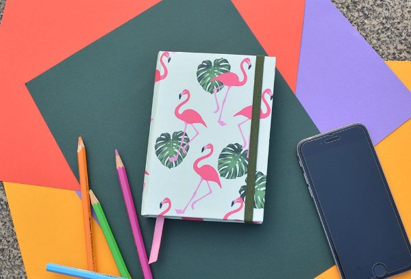 Sketchbook Flamingo fundo verde