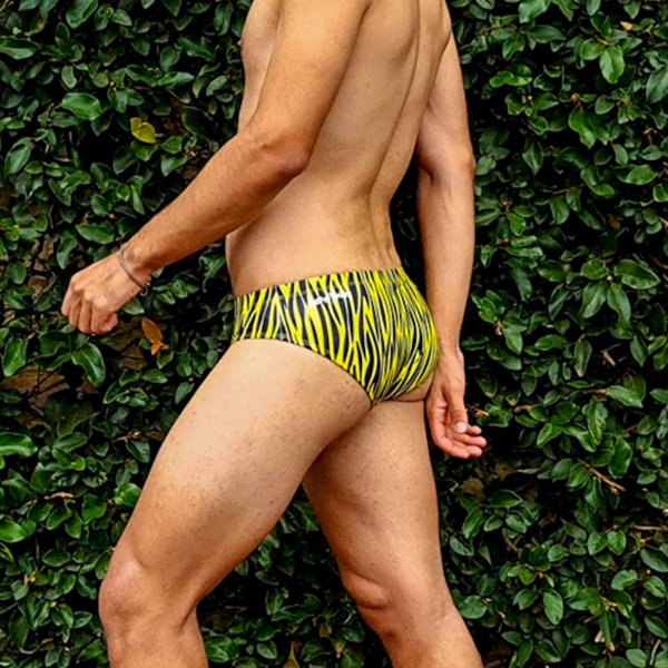 Sunga Cavada Animal Print Tigre Amarelo