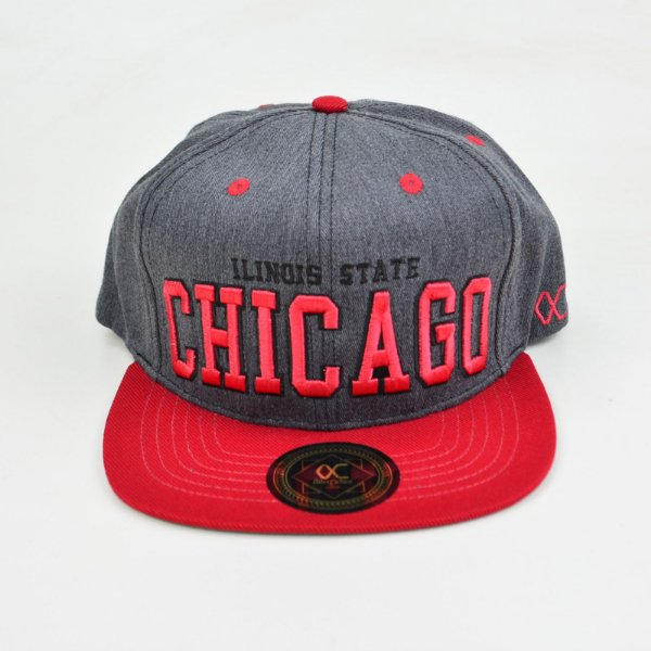 Boné Other Culture Snapback Ilinois Chicago