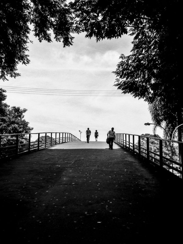 Longa Estrada da Vida • ©Magnesio
