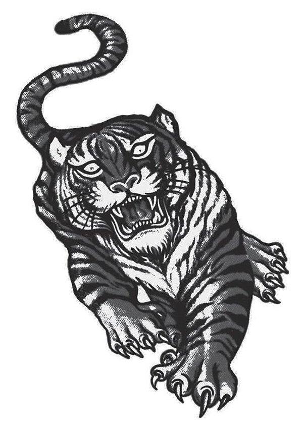 PB009 Tigre
