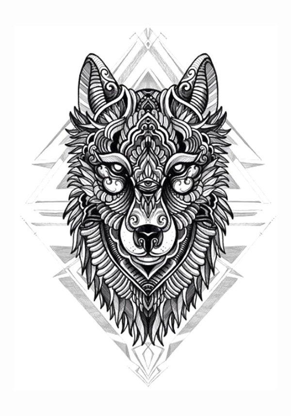 PB022 Lobo