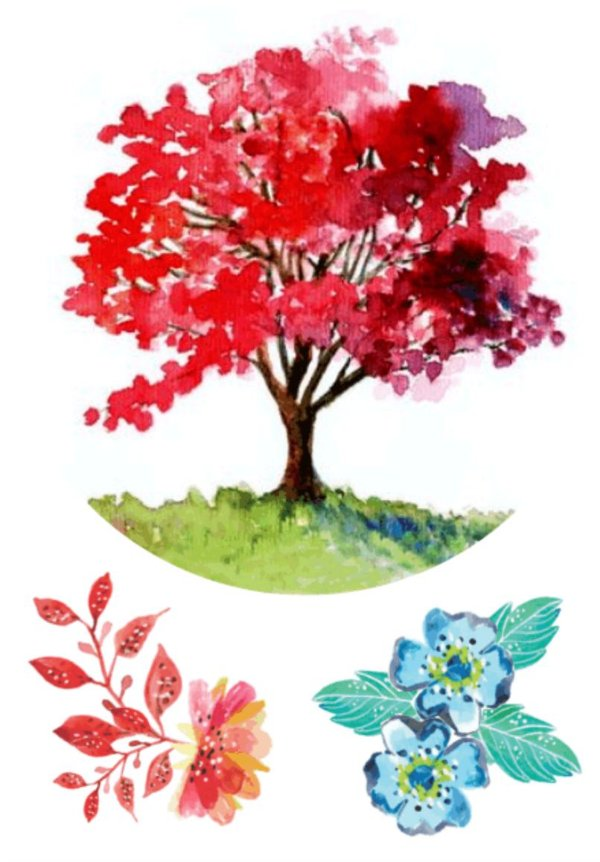 AQ019 Árvore e Flores