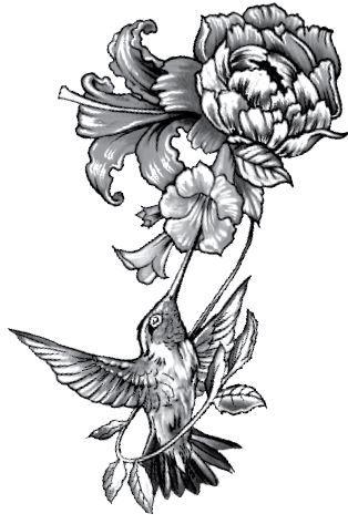 PB055 Beija flor