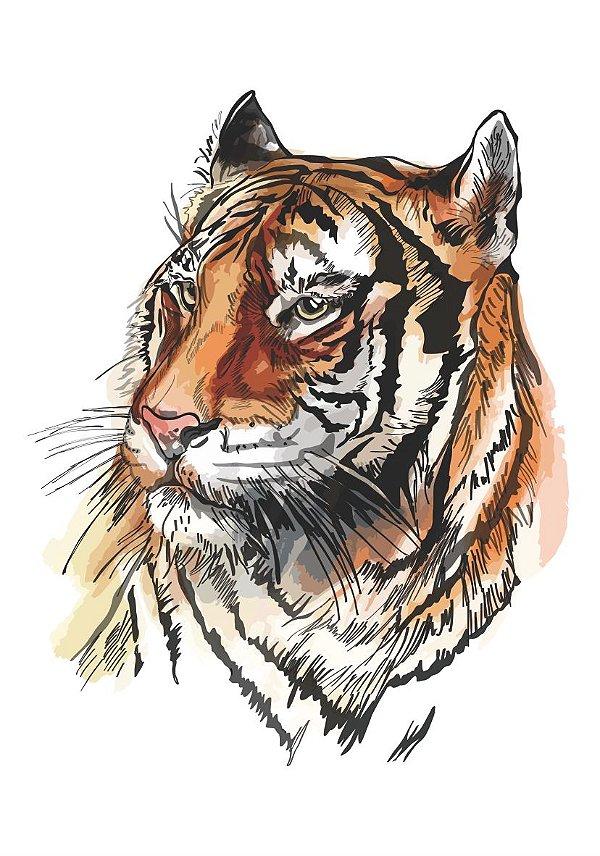 C054 tigre