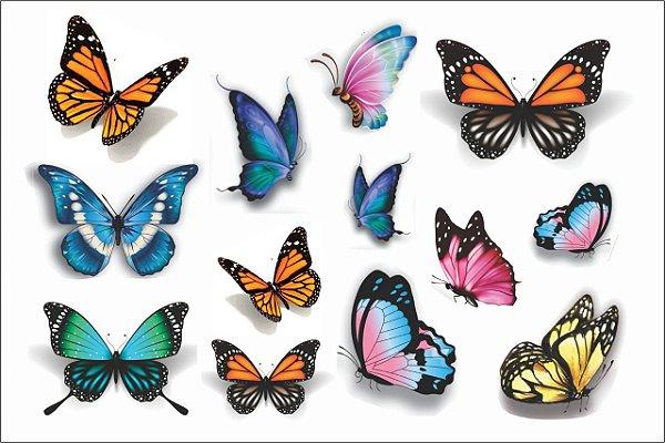 DepiBorboletas