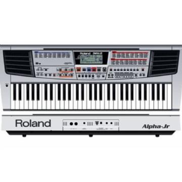 Teclado Roland Alpha Junior