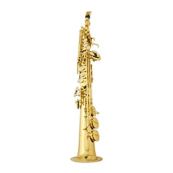 Saxofone Soprano Sib Waldman WSS GD