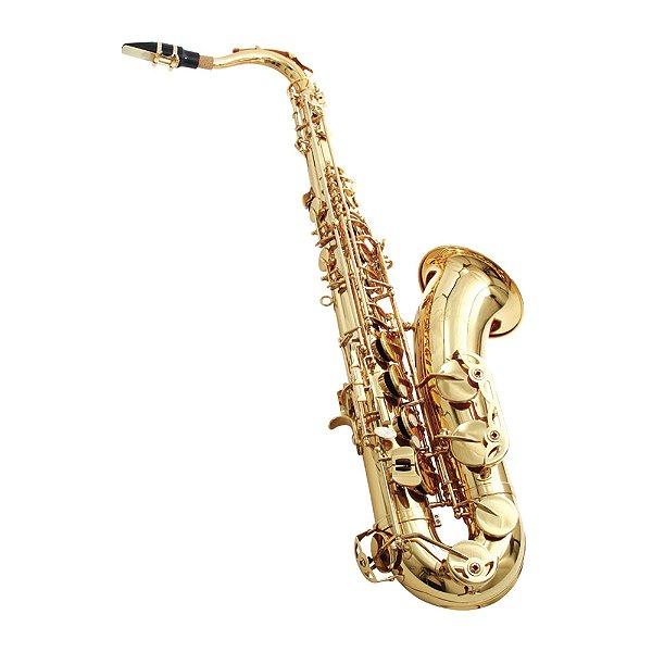 Saxofone Tenor Sib Waldman WST GD