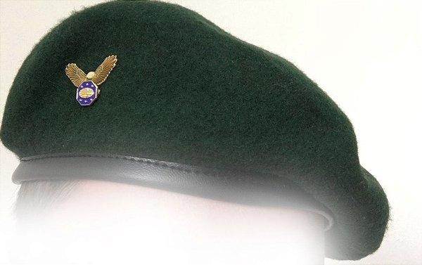 Boina Verde Com Águia e Pin Emblema de Líder - IASD7 - Desbravadores ... c876d172fd5