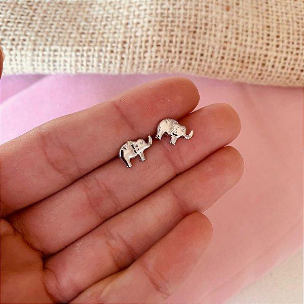 Brinco de elefante em aço inox