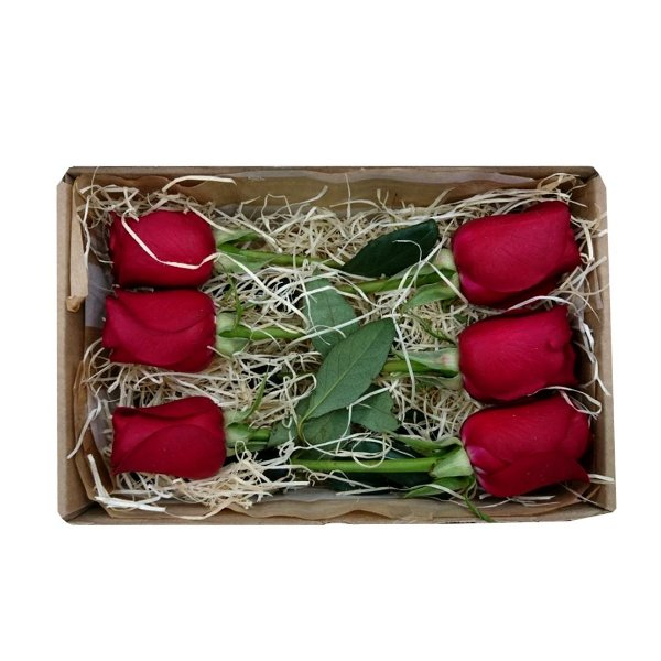06 Rosas Vermelhas Nacionais na Caixa para Presente