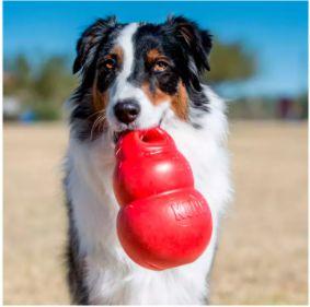 Brinquedo Kong para Cães Bounzer Vermelho - Tam M