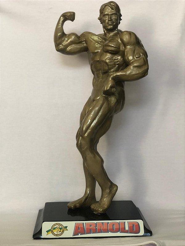 Estátua Arnold