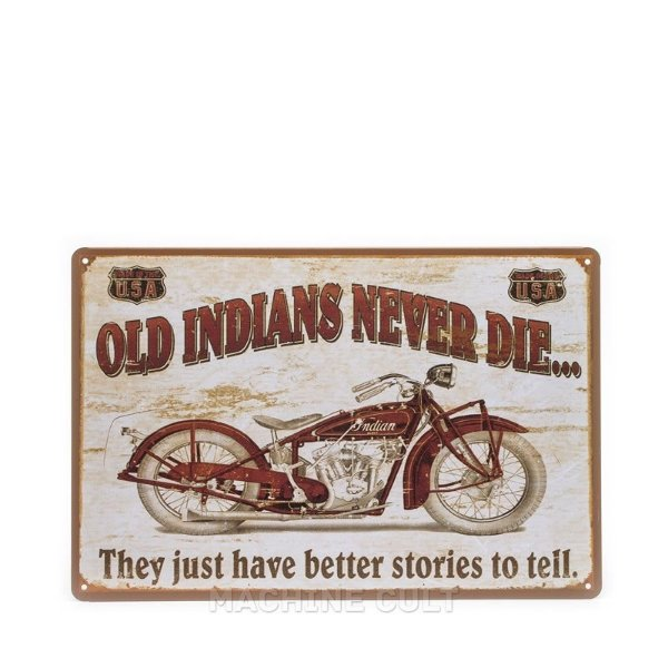 Placa Decorativa Moto Indian