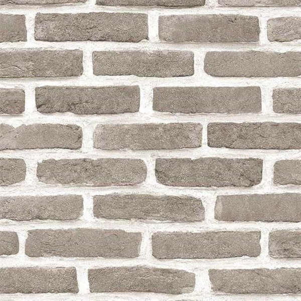 Papel de Parede Roll In Stones- J666-18