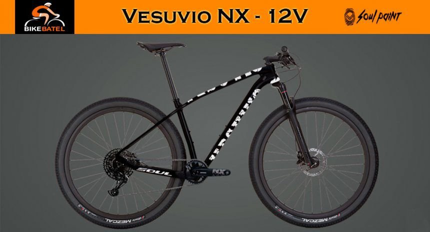 Bicicleta Soul Vesuvio Shimano NX 12V (Custom)