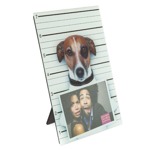 Porta Retrato Vidro Cão Criminoso 10X15 - Zona Criativa