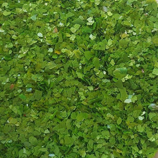 Bioglitter Neon - Verde que te quero!