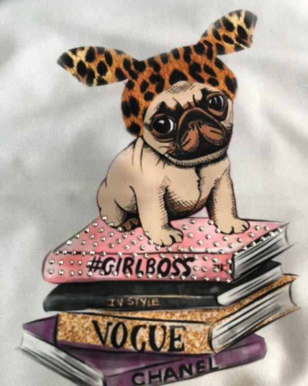 T-shirt de cachorro