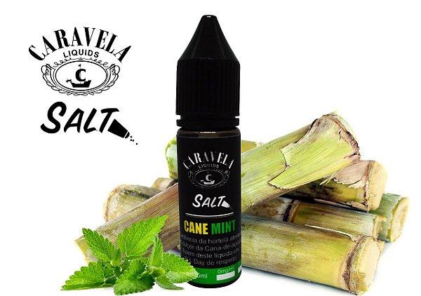 Salt Cane Mint 15mL - Caravela Liquids
