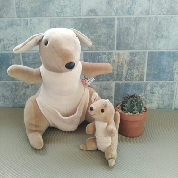Canguru com Filhote