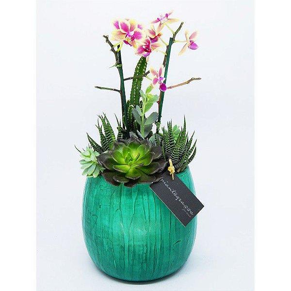 Cachepot bojudo médio com mix de cactos, suculentas e orquídea