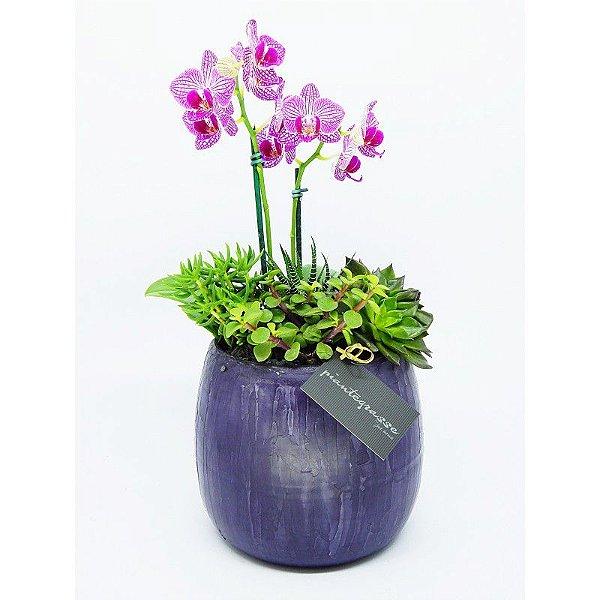 Cachepot bojudo médio com mix de cactos, suculentas e orquídea rosa