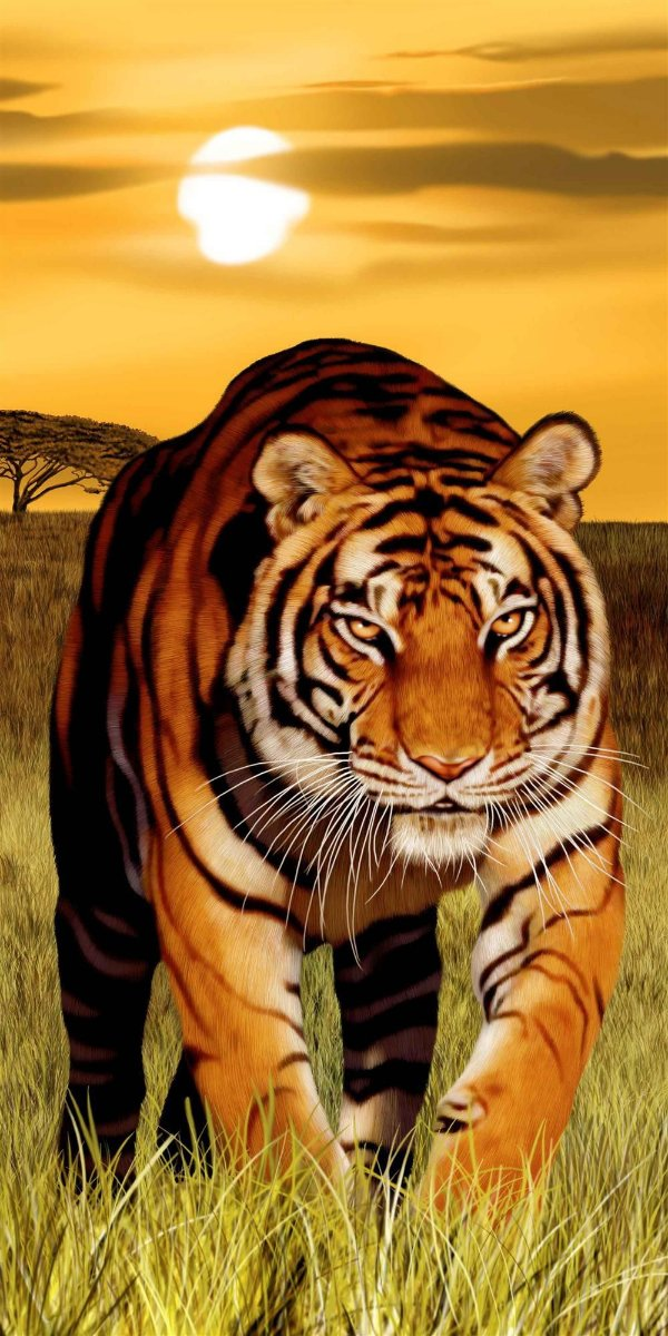 Toalha Praia Buettner Tigre 62149