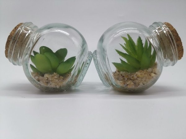 Plantas Mini Suculentas Artificiais Potinho De Vidro