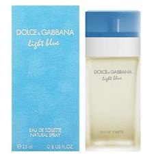 Perfume Dolce & Gabbana Light Blue Feminino EDT 100ml