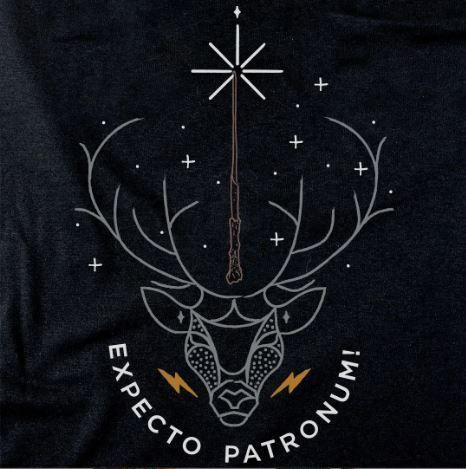 Camiseta Harry Potter M - Zona